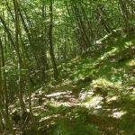 Dolomites - La Schiara, Zimon de Terme - De Bivacco Sperti à Casera Laronc