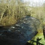 Kayak sur la Cure et le Trinquelin en mars 2007 avec un gros niveau d\'eau
