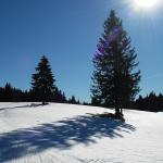 Ski de fond à partir de Pré Poncet