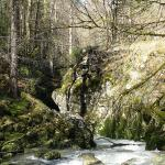 Photos de la Semine, dans le Jura