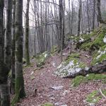 Photos de la Valserine, dans le Jura