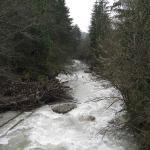 Photos de la Dranse d\'Abondance, en Haute-Savoie