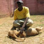 """Parc animalier privé \""""Lion and Cheetah Park\"""""""